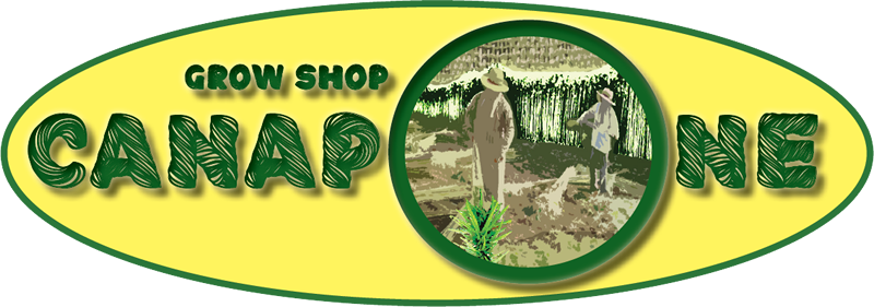 Grow Shop Canapone